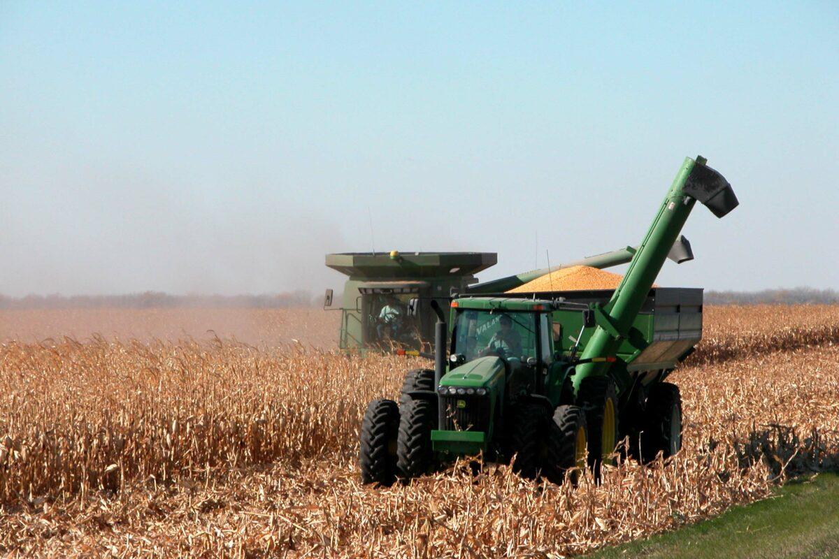 https://umwa.net/wp-content/uploads/2019/11/Corn-harvest-1200x800.jpg